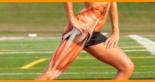 Los mejores ejercicios de piernas para corredores en el gimnasio