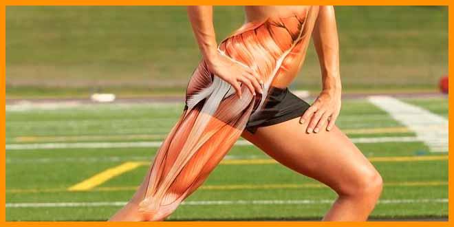 Ejercicios de piernas para Corredores en el gimnasio | voyacorrer.com